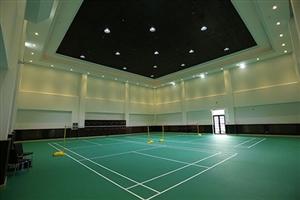 成都羽毛球馆:羽林军羽球会所