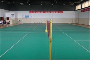 成都羽毛球馆:凤凰湖运动中心